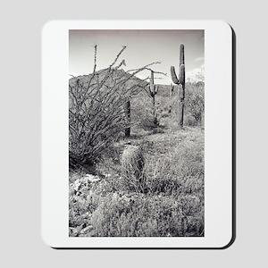 Cowboy Garden Desert Mousepad