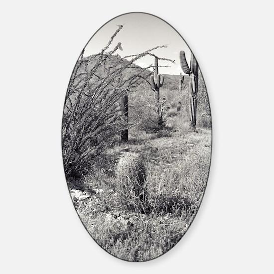 Cowboy Garden Desert Decal