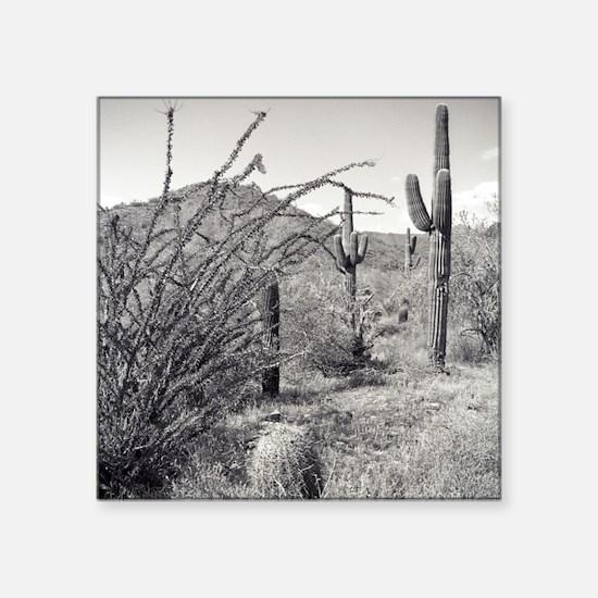 Cowboy Garden Desert Sticker