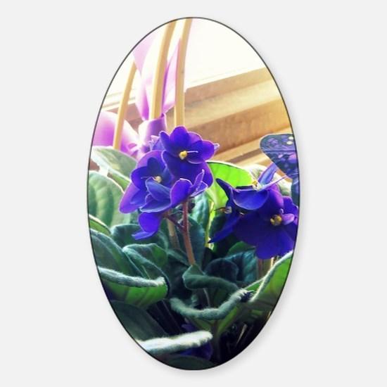 Purple Violet Basket  Sticker (Oval)