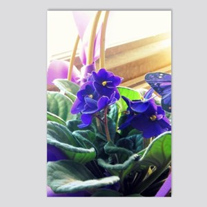 Purple Violet Basket  Postcards (Package of 8)