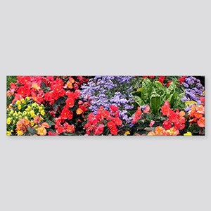 Flowers, Anchorage, Alaska, USA Bumper Sticker