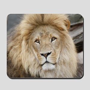 Lion20150802 Mousepad