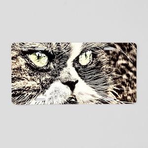 persian kitten Aluminum License Plate