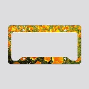 California Poppy's License Plate Holder