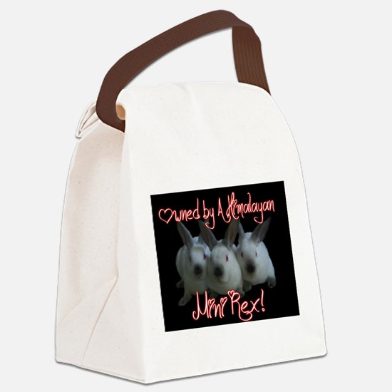 Owned by A Himi Canvas Lunch Bag