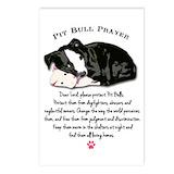 Pit bull Postcards