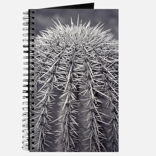 Buzz Cut Cactus Black & White Photo Journal