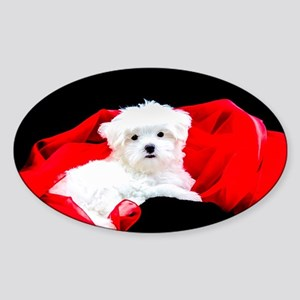 White Maltese Puppy Lying on Red Fabric on Sticker