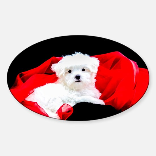 White Maltese Puppy Lying on Red Fabric on Decal