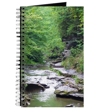 forest river scenery Journal