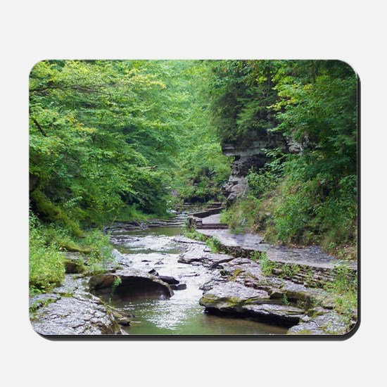 forest river scenery Mousepad