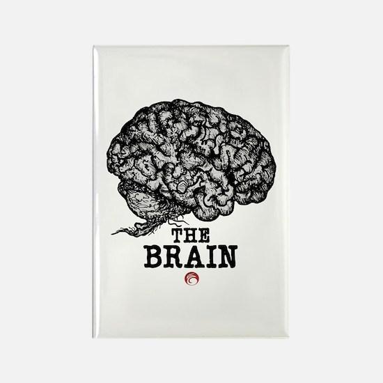 Glaze Brain Rectangle Magnet
