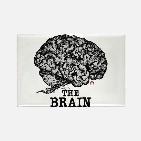 Glaze Brain Rectangle Magnet (10 pack)