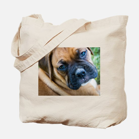 Fawn Boxer Pup Tote Bag