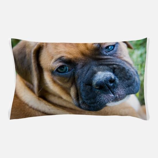 Fawn Boxer Pup Pillow Case