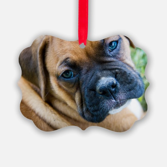 Fawn Boxer Pup Ornament
