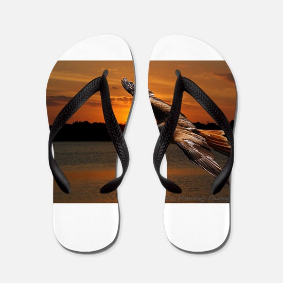 Another Morning Flip Flops