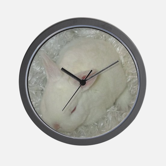 Mini Rex Baby Wall Clock