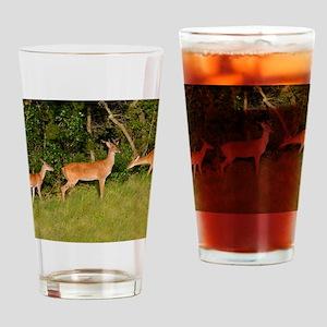 Deer Tryst Drinking Glass