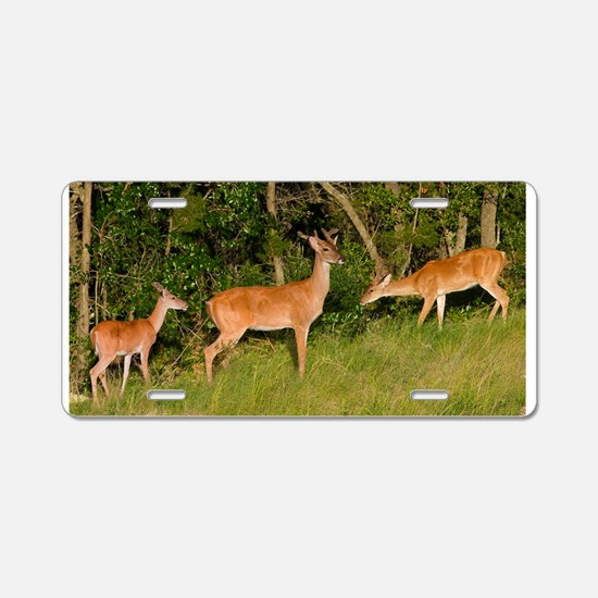 Deer Tryst Aluminum License Plate