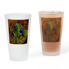 Magical Dragonfly Design Drinking Glass