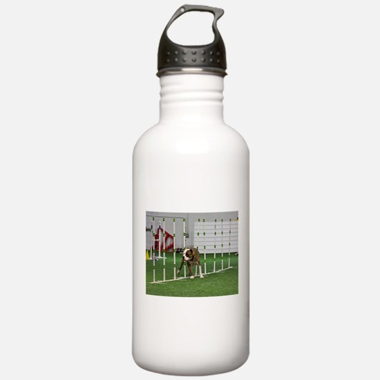 Pit Bull 27 Water Bottle