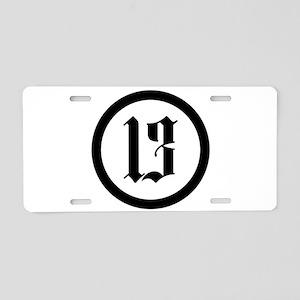 13 Aluminum License Plate