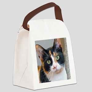 Bandit Canvas Lunch Bag