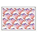 Opah Pattern Banner