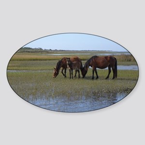 Shackleford Ponies Sticker (Oval)