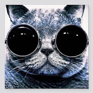 "Cool Cat With Shades Square Car Magnet 3"" x 3"""
