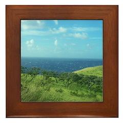 Maui Meadow Trees Framed Tile