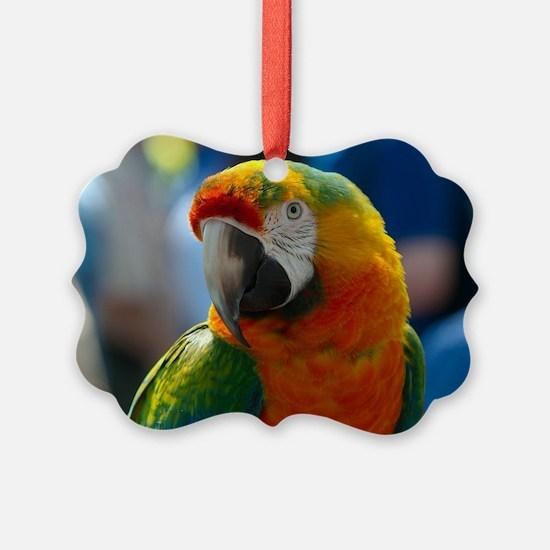 Cute Macaw Ornament