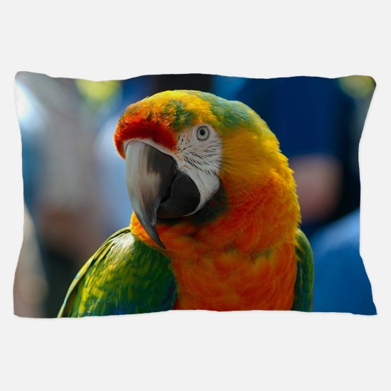 Unique Macaw Pillow Case