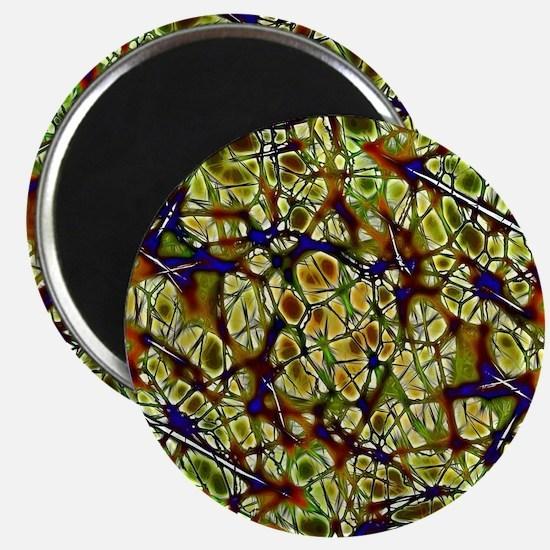 Neurons Magnet