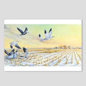 SRose Bottomland Rendevous Postcards (Package of 8