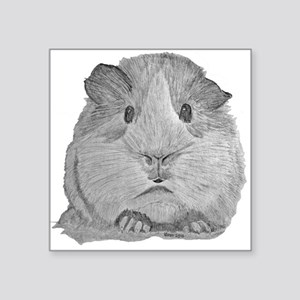 Guinea Pig by Karla Hetzler Sticker