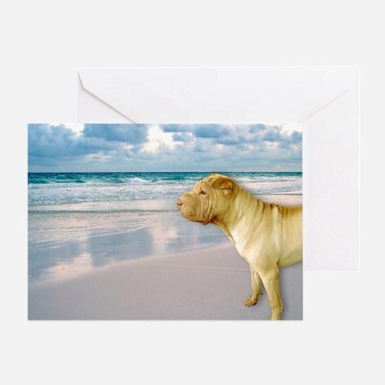 Funny Scenic sea Greeting Card