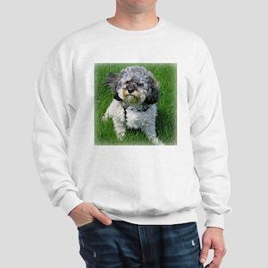 Fudgie's Fabulous Sweatshirt