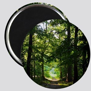 Forest Path Magnet