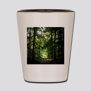 Forest Path Shot Glass