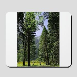 sequoia national park Mousepad