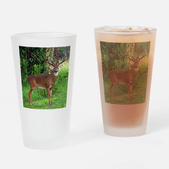 Cute Deer Drinking Glass