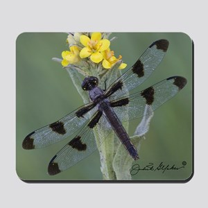 12-Spot Dragonfly on Mullein Mousepad