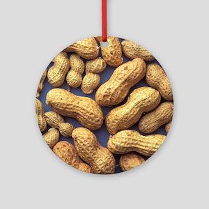 Peanuts Round Ornament