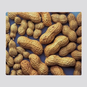 Peanuts Throw Blanket