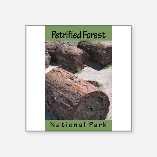 """Cute Petrified forest national park Square Sticker 3"""" x 3"""""""