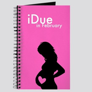 iDue February Journal