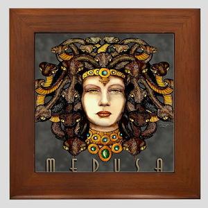 Medusa Steel Framed Tile